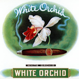 1920c_cigar_white_orchid_7x8.25_dlw, White Orchid, HLN Co, Cuban Cigar Labels, Lithograph, 1920c, Gallery East, Gallery East Network