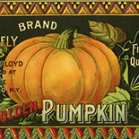 1890c_label_butterfly_pumpkin_4x10.5_dlw, Butterfly Brand Pumpkin, 1890c, Lithograph, Advertising Label, Gallery East, Gallery East Network