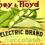 1890c_label_electric_succotash_4x11_dlw, Electric Brand Succotash, 1890c, Lithograph, Advertising Label, Gallery East, Gallery East Network