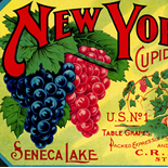1890c_label_ny_state_grapes_5x10.5_dlw, New York State Grapes, 1890c, Lithograph, Advertising Label, Gallery East, Gallery East Network