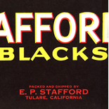 1930c_label_stafford_blacks_5x13_dlw, Stafford Blacks Grapes, 1930c, Lithograph, Advertising Label, Gallery East, Gallery East Network
