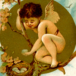 1880c_vtc_boy_fairy_2.75x5_dlw, Art Nouveau, Boy Fairy, Prince & Walker, Victorian Trade Card, c1880, Lithograph, Objets d'art, Gallery East, Objets, Gallery East Network